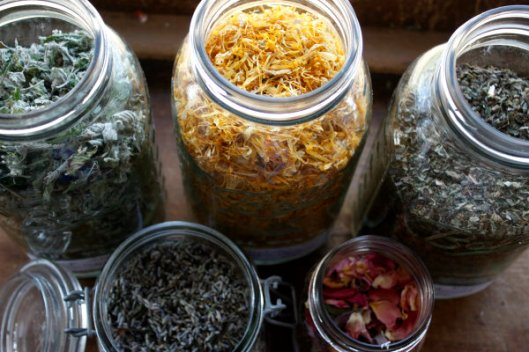 Calendula For Breast Cancer Complementary Therapy